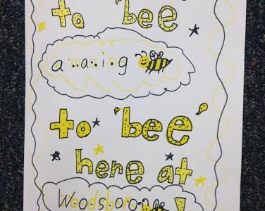 Bee Amazing at Woodsboro!!!