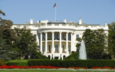 Secret Service Arrests Person on White House Grounds